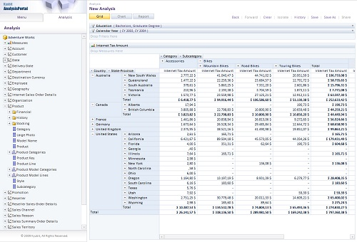 AnalysisPortal OLAP Grid